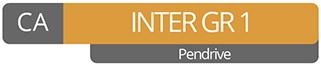 CA Intermediate GR 1 (Pendrive)